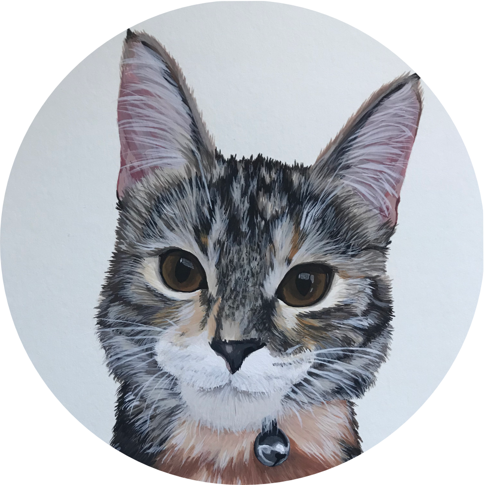 Pooka Doodles cat portrait